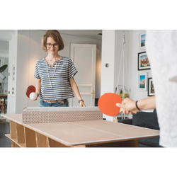 TABLE DE TENNIS DE TABLE FREE PPT 100 SMALL INDOOR