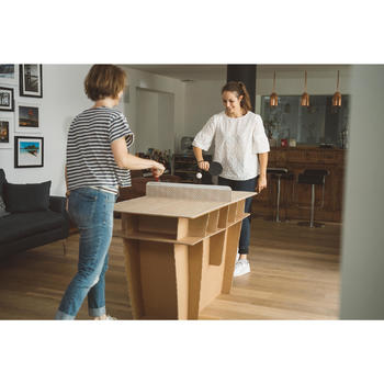 PPT 100 Small Free Indoor Table Tennis Table