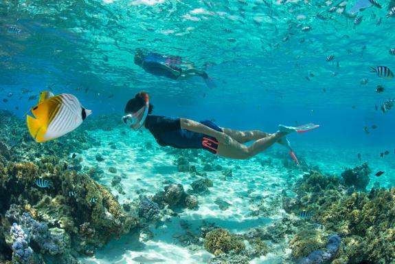 blog test snorkeling freediving subea