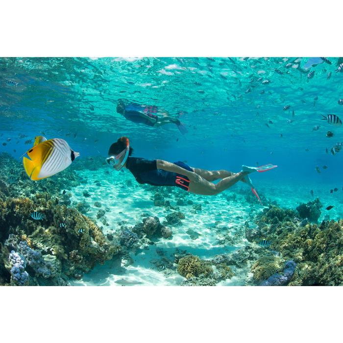 Snorkel voor volwassenen SNK 520 mistgrijs