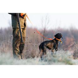 Collier chien 900 Orange