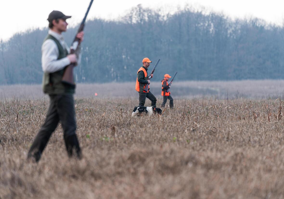 Come scegliere un gilet per la caccia