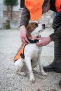 DOPLŇKY PRO LOVECKÉ PSY Myslivost a lovectví - VESTA 100 PRO PSA ORANŽOVÁ SOLOGNAC - Potřeby pro lovecké psy