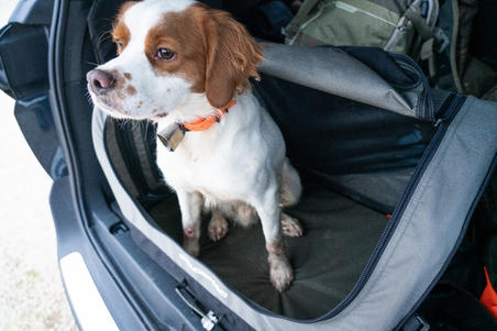 Saliekams suņu transportēšanas būris