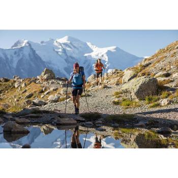 Herenshort voor bergtrekking Trek 500 donkergrijs
