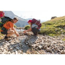 Trekkingschuhe Trek 100 Leder Herren