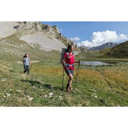Trekkingschuhe Trek 100 Leder Damen