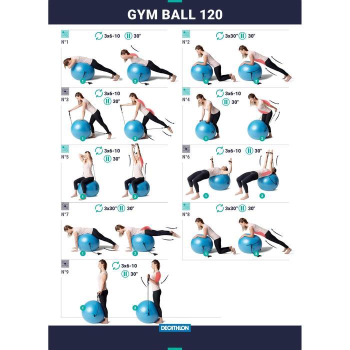 Gymbal met elastieken en handvatten blauw