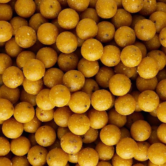 Boilies Karpfenangeln Wellmix Scopex 14 mm 10 kg