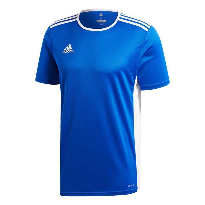 Fußballtrikot Entrada Erwachsene blau