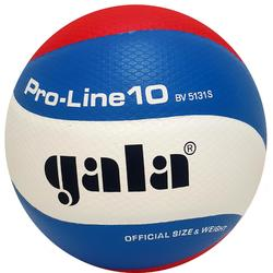 Balle de volley-ball Gala BV5131S