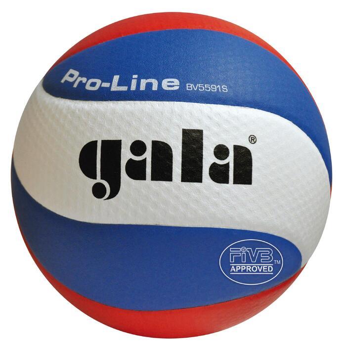 Balle de volley-ball Gala BV5591S