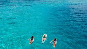 surf_voyager_planche_housse_olaian