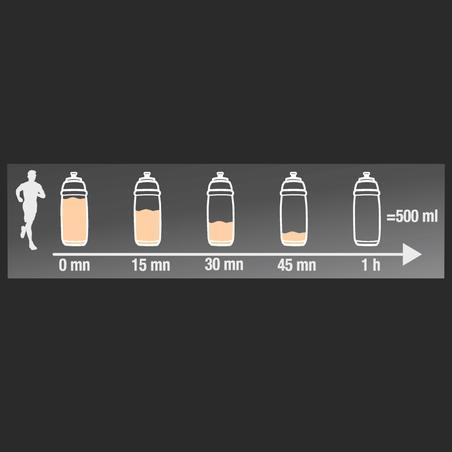 Izotoninis gėrimas + 650 g šaltos persikų arbatos milteliai