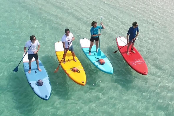 stand-up-paddle-debutants.jpg