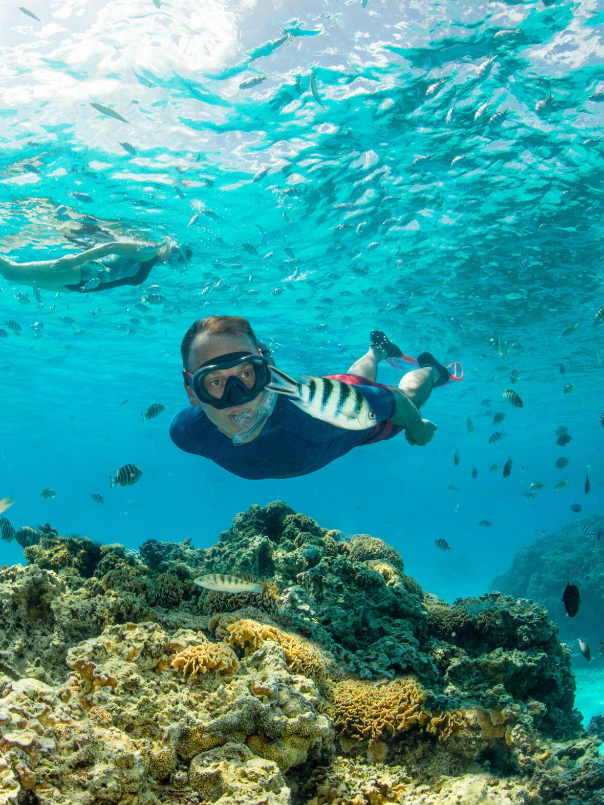 storia apnea freediving subea decathlon