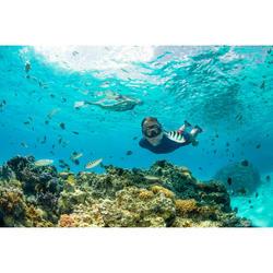 Snorkel voor volwassenen SNK 520 stormgrijs