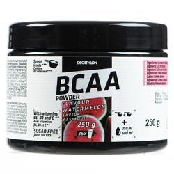 BCAA 2.1.1 PASTEQUE 250 grs