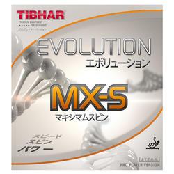 Rivestimento racchetta ping pong EVOLUTION MX-S