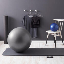 SWISS BALL GRIS STABLE