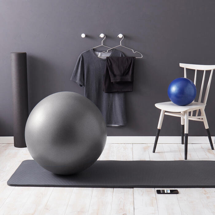 SWISS BALL STABLE GRIS