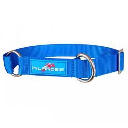 Collier réglable pour chien, Inlandsis Summit Bleu.