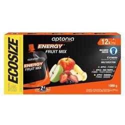 Energy-Fruchtspezialität 12 × 90g Apfel Apfel-Banane Apfel-Rote-Früchte