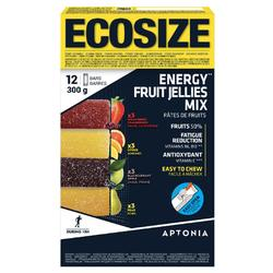 Pasta de frutas energética ECOSIZE 12x25 g (x4 sabores).