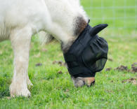 proteger_son_cheval_des_insectes