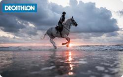 Tarjeta Regalo Equitación, Caballo