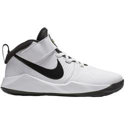 Chaussure de basketball pour enfant NIKE TEAM HUSTLE D9 débutant ou confirmé.