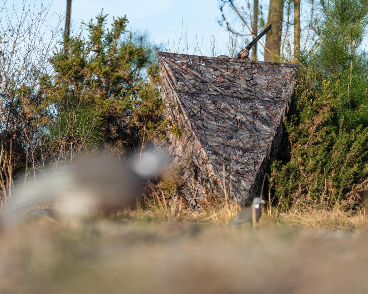 Un affût pour se camoufler pendant la chasse