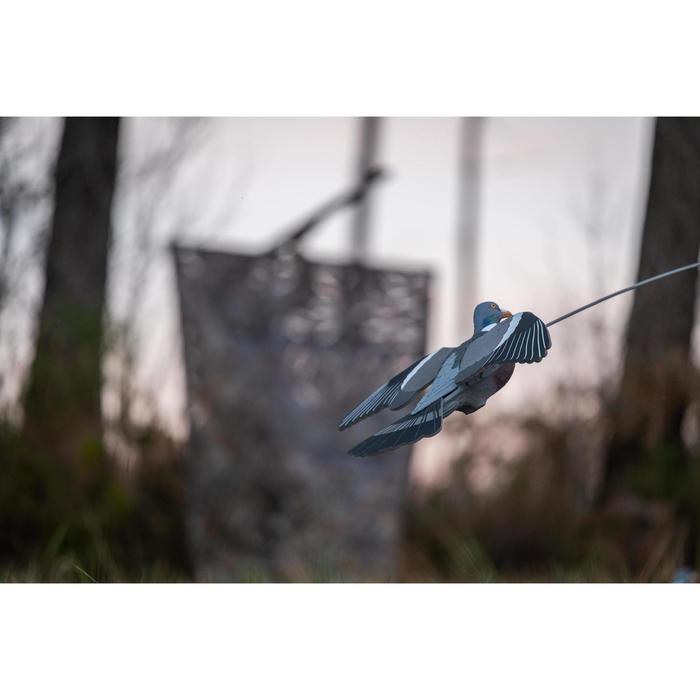 Lokduif met klapperende vleugels en bouncer voor de jacht
