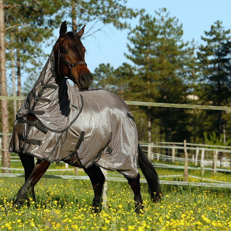 proteger_son_cheval_des_insectes