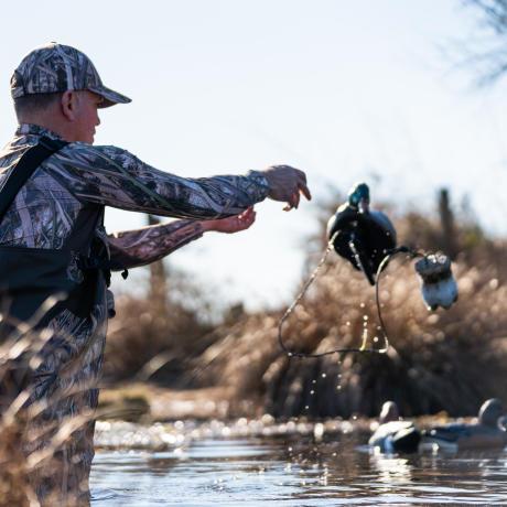 Placement des appelants à canard sur le plan d'eau