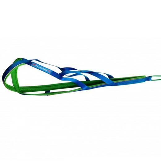 Harnais de canicross, cani-VTT Polar Quest Vert/Bleu.