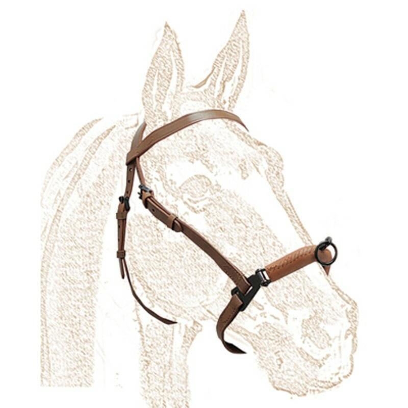 CABEZADA con SERRETA Equitación Zaldi Caballo Marrón FORRADA 1P