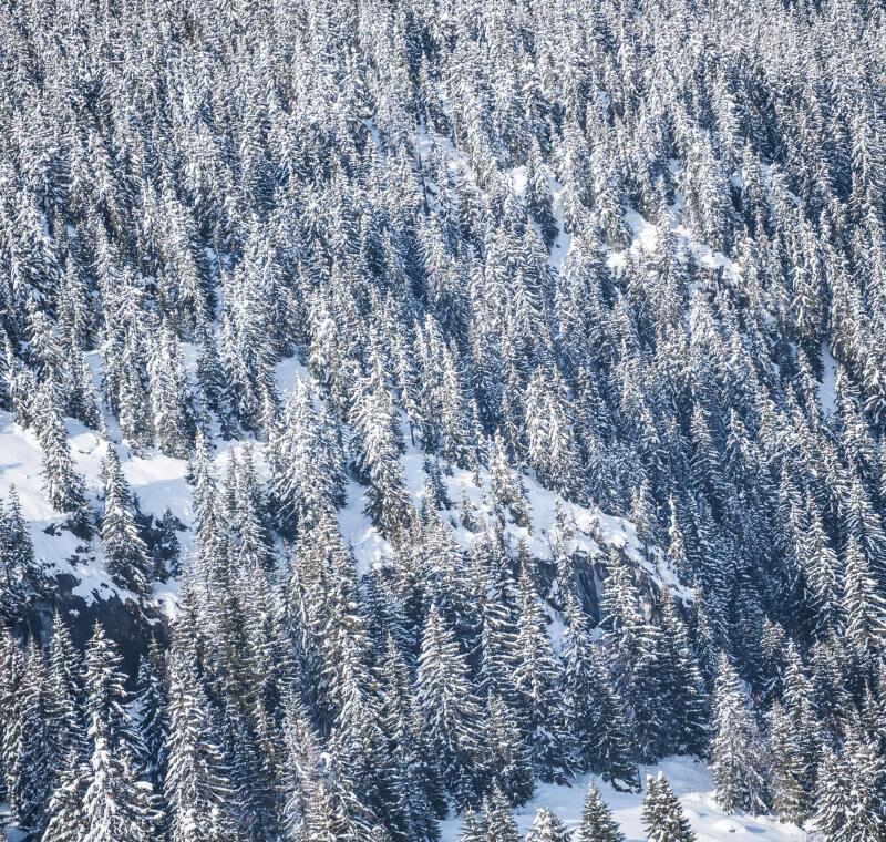 Nos 5 stations de ski de fond préférées en Savoie et Haute-Savoie