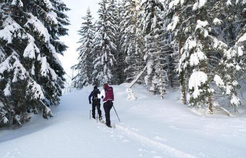 rappel sécurité ski raquette