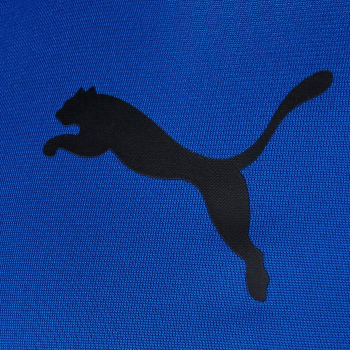 SURVEMENT PUMA