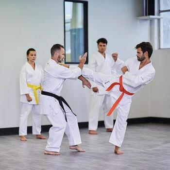 Karatepak voor volwassenen 100