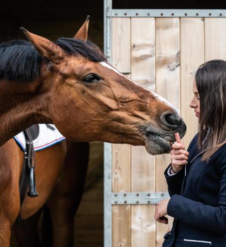 friandise cheval fouganza