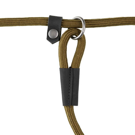 100 lasso dog leash