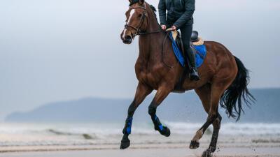 monter_a_cheval_a_la_plage_fouganza.jpg