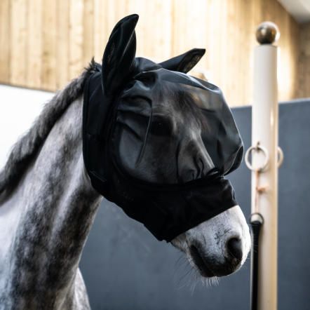 fly-mask-masque-anti-mouche-cheval.jpg