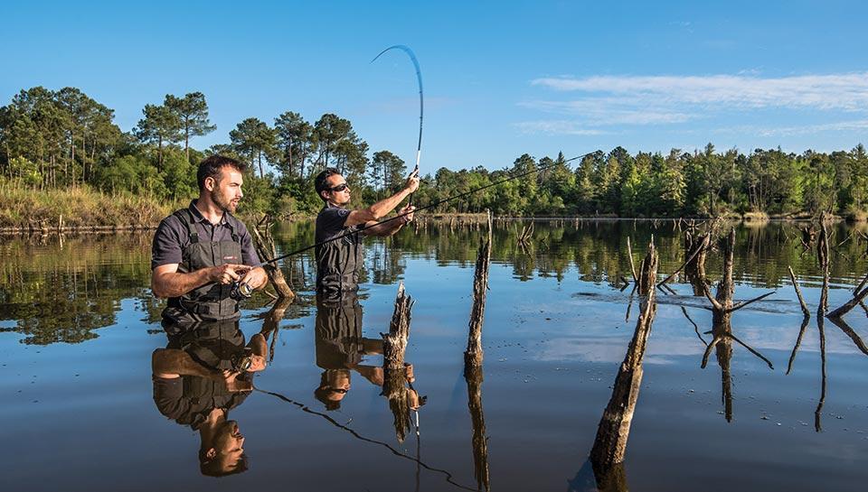 bon plan pêche des carnassiers