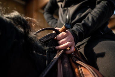 Alt/monter une cheval froid
