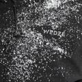 PÁNSKÉ OBLEČENÍ NA LYŽOVÁNÍ (POKROČILÍ) Lyžování - PÁNSKÁ LYŽAŘSKÁ BUNDA 500 WEDZE - Lyžařské oblečení a doplňky