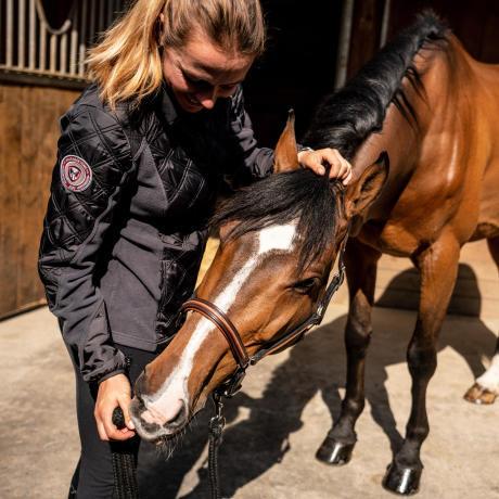 bien etre pansage cheval equitation fouganza 7