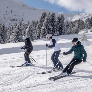 Die richtige Wahl der Ski für Erwachsene